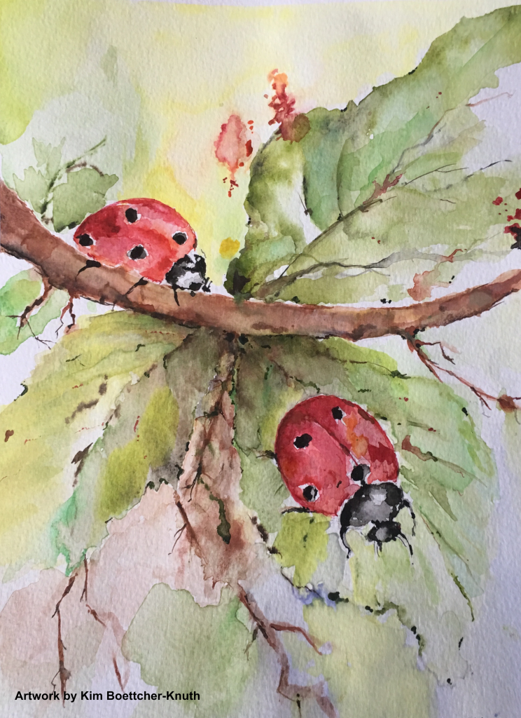Two Ladybugs painted by Kim Knuth